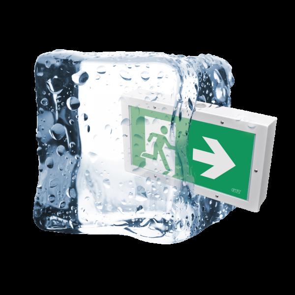 ALASCO 65 ICE